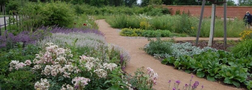 H. Rabaty bylinowe English gardenpaint